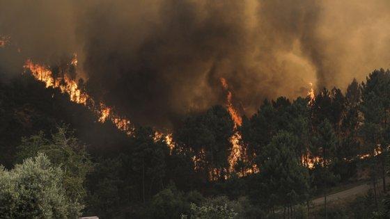 As dificuldades surgidas no combate ao fogo estão relacionadas com os acessos, devido aos terrenos rochosos e com mato