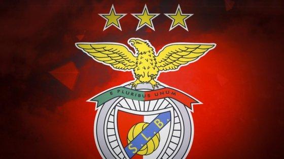 "Encarnados dizem que Liga foi ""pouco esclarecedora"" na resposta dada ao comunicado do Benfica"
