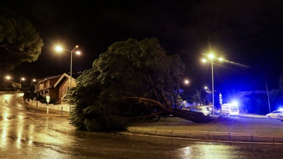 Viseu foi o distrito mais afetado pelo mau tempo, com 66 do total de ocorrências registadas.