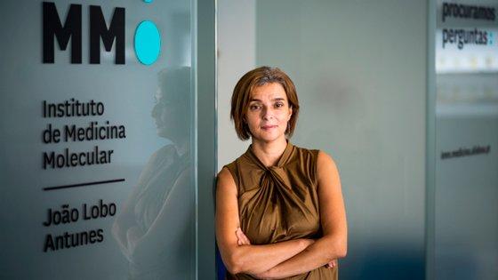 Maria Manuel Mota, diretora executiva do Instituto de Medicina Molecular, estuda a malária há 25 anos e não acredita em soluções fáceis ou a curto prazo. Não tem dúvida que vai ser criada uma vacina, mas não arrisca afirmar que será no seu tempo de vida