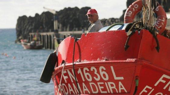Um pescador recebe 438,81 euros por cada mês e os armadores 766 euros