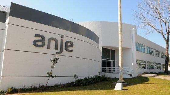 pandemia fez a ANJE centrar-se no apoio à digitalização e nas empresas não tecnológicas