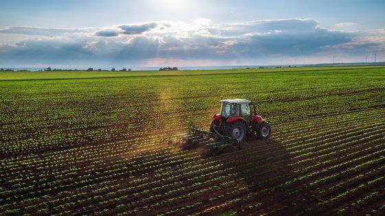 Só no mês de agosto, a subida de exportações agrícolas foi de 24,6%