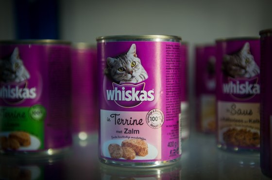 TO GO WITH STORY BY EMMANUELLE MICHEL. A picture taken on May 27, 2015 shows Mars Petcare and Foods products at the Mars headquarters in-Saint Denis-de-l'Hotel. The Mars Petcare and Foods company produces pet food and distributes brands such as Whiskas, Sheba, Pedigree, Kitekat, Royal Canin. AFP PHOTO / GUILLAUME SOUVANT        (Photo credit should read GUILLAUME SOUVANT/AFP/Getty Images)