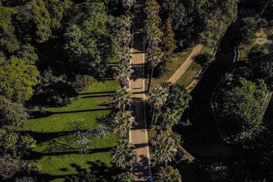 Um ano depois de ter encerrado, o Jardim Botânico Tropical, em Belém, Lisboa, abre portas no sábado com espaços renovados, desde caminhos, condutas de água e de rega, 21 de janeiro de 2020. (ACOMPANHA TEXTO DO DIA 23 DE JANEIRO DE 2020) MÁRIO CRUZ/LUSA